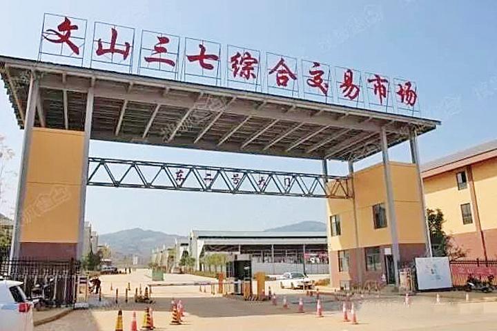 文山三七产业园区推进三七产业集群化发展
