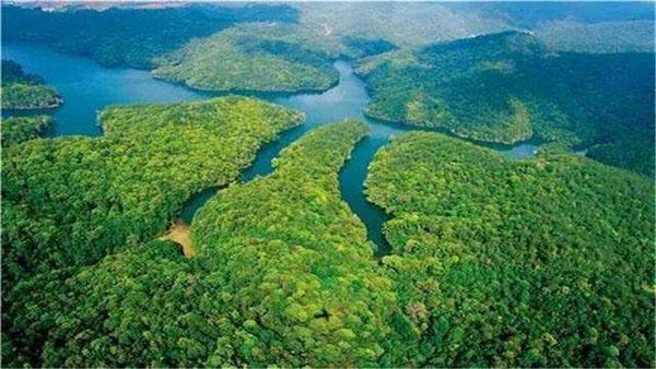 走,种树去!――各地抢抓时机积极推动国土绿化