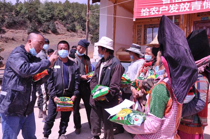 道谷村民领取青储饲料(玉米)种子
