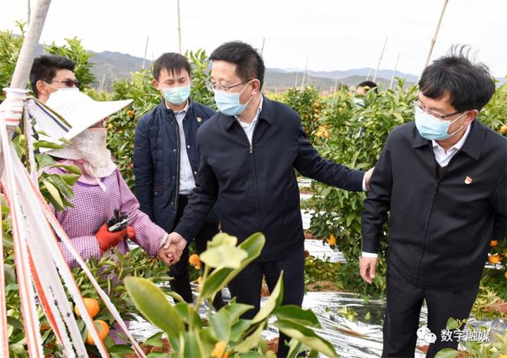 楚雄州农业农村局打赢打好产业扶贫硬仗
