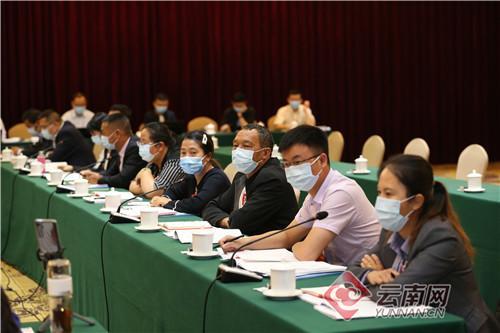 云南省代表团分组审议全国人大常委会工作报告