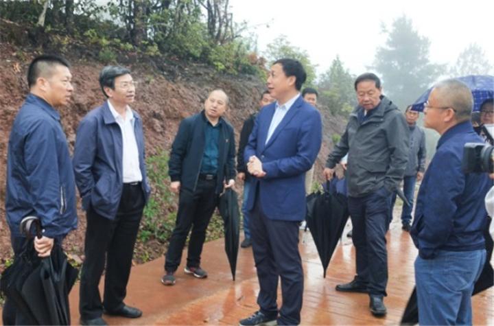 云南省生态环境厅调研组到南华调研三峰山州级自然保护区云台山风电场拆除及修复整改工作