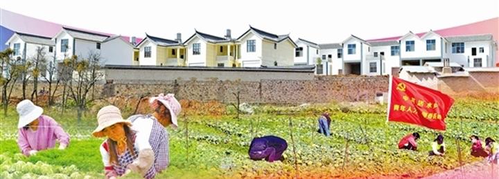 陆良:一个非贫困县的战贫之策
