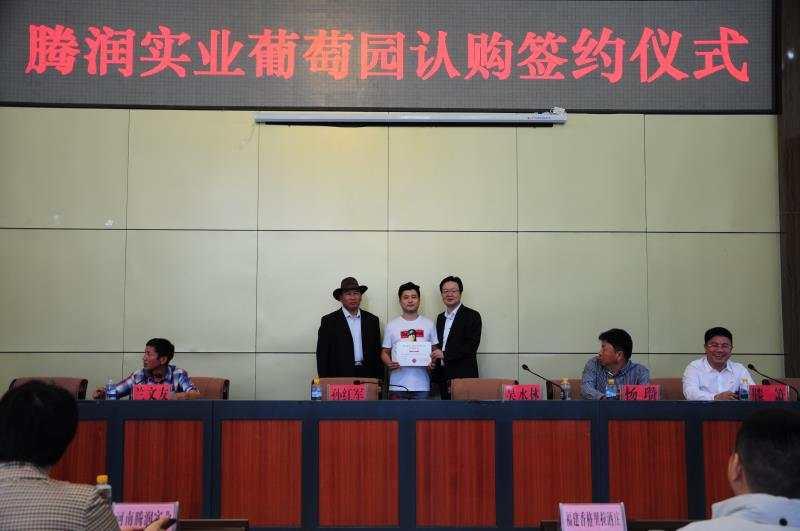 香格里拉葡萄园迎来国内4家企业认购签约