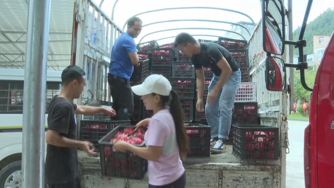 甜到心里,他们为驻守边境疫情防控一线人员送去3吨火龙果!